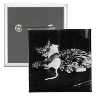 Amistad asombrosamente - gato Minnie y ratón de Pin Cuadrado