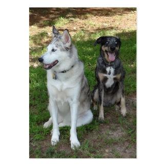 Amistad del perro de Catahoula y de Ausky Tarjetas De Visita