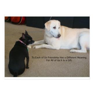 Amistad del perro postal