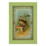 Amistad, rana del Victorian (sapo), toadstools Posters