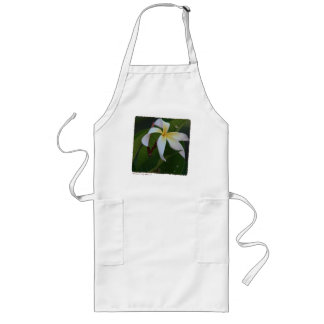 Ammaron's Curly White - Aprons