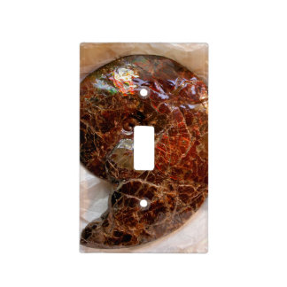 Ammolite Ammonite Light Switch Cover