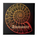 Ammonite セラミックタイル