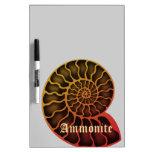 Ammonite ドライイレースボード