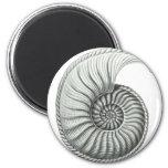 Ammonite 2 Inch Round Magnet