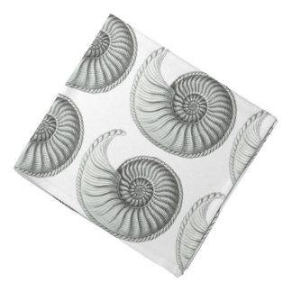 Ammonite Bandana