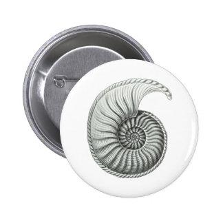 Ammonite Button
