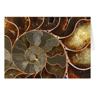 Ammonite Stationery Note Card