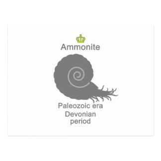 Ammonite g5 postcard