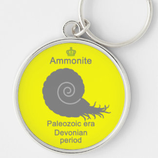 Ammonite g5 Silver-Colored round keychain