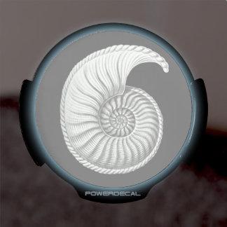 Ammonite LED Car Decal