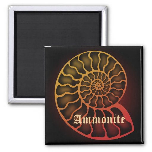 Ammonite Fridge Magnet