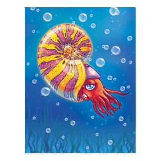 Ammonite Post Card