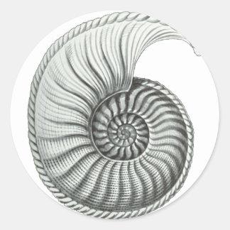 Ammonite Classic Round Sticker