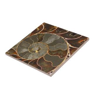 Ammonite Small Square Tile