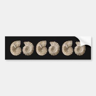 Ammonites Bumper Sticker
