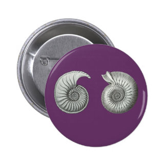 Ammonites Buttons