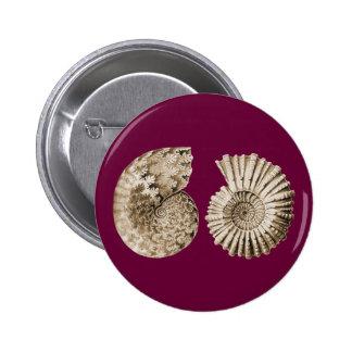 Ammonites Button