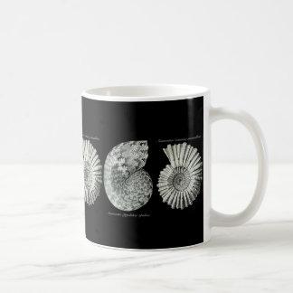 Ammonites Coffee Mug