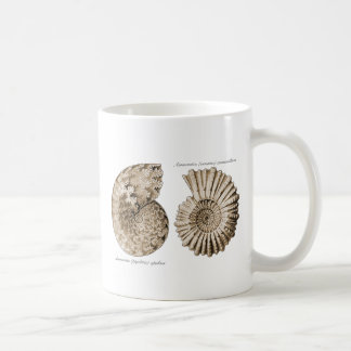 Ammonites Coffee Mug