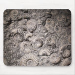 Ammonites Mouse Pad