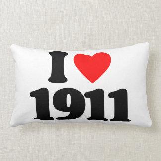 AMO 1911 COJINES