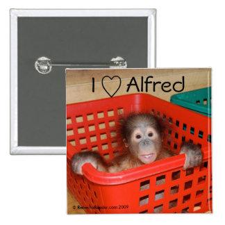Amo a Alfred el bebé del orangután Pin Cuadrado