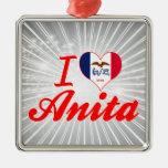 Amo a Anita, Iowa Ornato