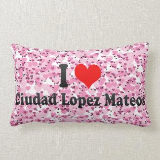 Amo a Ciudad López Mateos, México Cojines