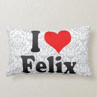 Amo a Felix Cojin