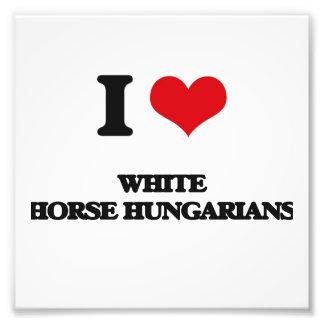 Amo a húngaros del caballo blanco cojinete