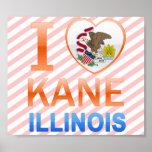 Amo a Kane, IL Posters