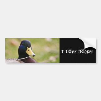 Amo a la pegatina para el parachoques de los patos pegatina de parachoque
