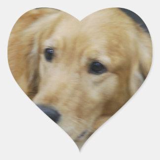 Amo a los pegatinas de Goldens Pegatina En Forma De Corazón