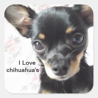 Amo a los pegatinas de la chihuahua calcomania cuadrada personalizada