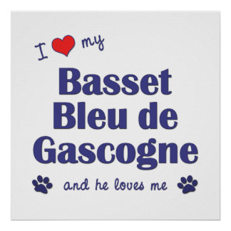 Amo a mi Basset Bleu de Gascogne (el perro masculi Póster