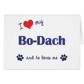 Amo a mi BO-Dach el perro masculino Felicitacion