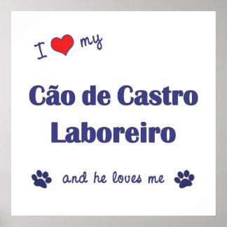 Amo a mi Cao de Castro Laboreiro (el perro masculi Posters