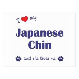 Amo a mi Chin japonés (el perro femenino) Postal