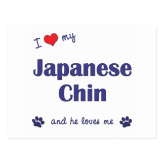 Amo a mi Chin japonés (el perro masculino) Postal