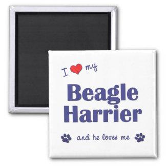 Amo a mi corredor de cross del beagle (el perro ma imán cuadrado