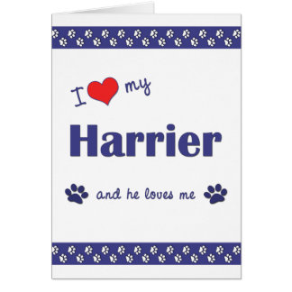 Amo a mi corredor de cross (el perro masculino) tarjeta pequeña