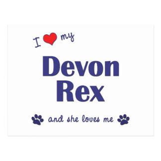 Amo a mi Devon Rex (el gato femenino) Postal