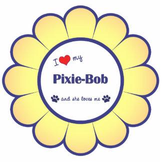 Amo a mi Duendecillo-Bob (el gato femenino) Escultura Fotografica
