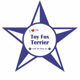 Amo a mi fox terrier del juguete (el perro femenin adorno fotoescultura