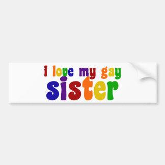 Amo a mi hermana gay pegatina de parachoque