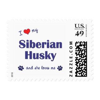 Amo a mi husky siberiano (el perro femenino) sello postal