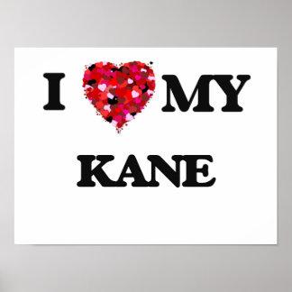 Amo a MI Kane Póster