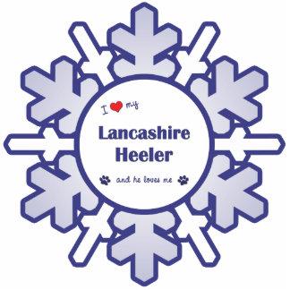 Amo a mi Lancashire Heeler (el perro masculino) Adorno Fotoescultura