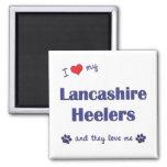 Amo a mi Lancashire Heelers (los perros múltiples) Imán De Frigorífico